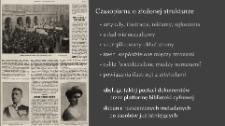 Metody prezentacji publikacji cyfrowych - Czasopisma w bibliotekach cyfrowych